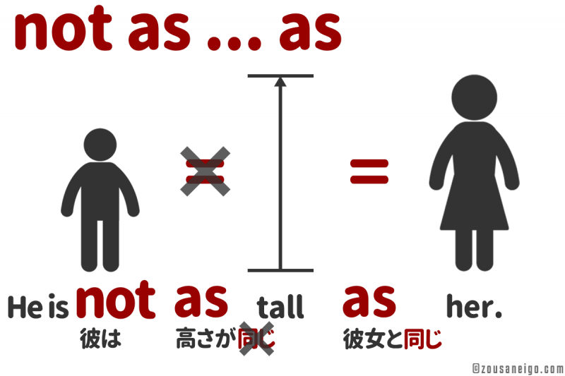 asのイメージ He is not as tall as her.